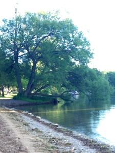 Meditation-by-lake