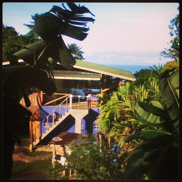 The Yoga Farm, Costa Rica