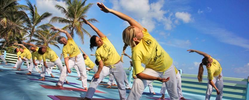 International Sivananda Yoga Vedanta Centres